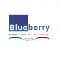 Blueberry access control